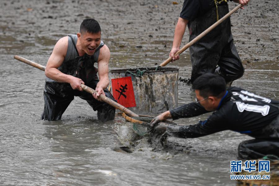 """杭州:西溪湿地 乐享""""干塘""""捕"""