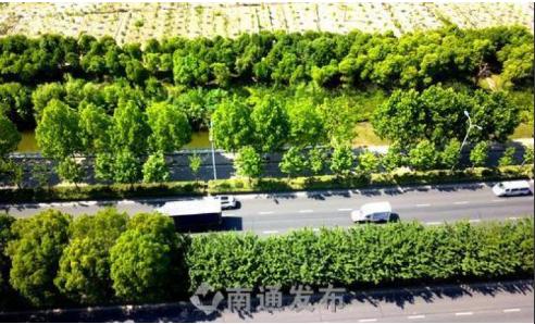 打造特色滨水绿地,共享绿色生态