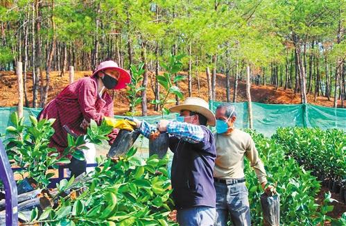 http://www.gzfjs.com/guangzhoufangchan/297205.html