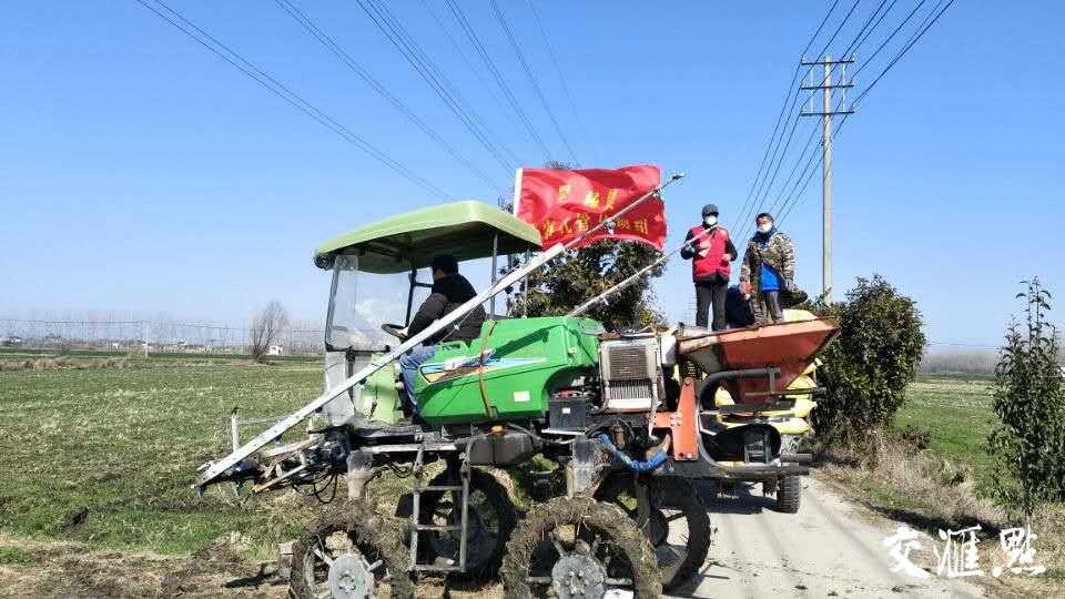 """外地种植户赶不回来?泰州海陵创新推出农田""""委托代管"""""""